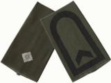 Offizier / Unteroffizier mit Portepee (Leutnant / Feldwebel)